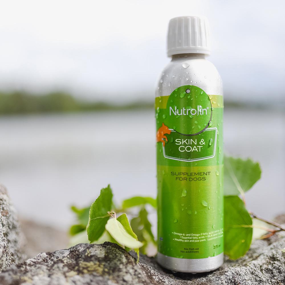Nutrolin Skin & Coat® – kosttillskott för hundens hud och päls