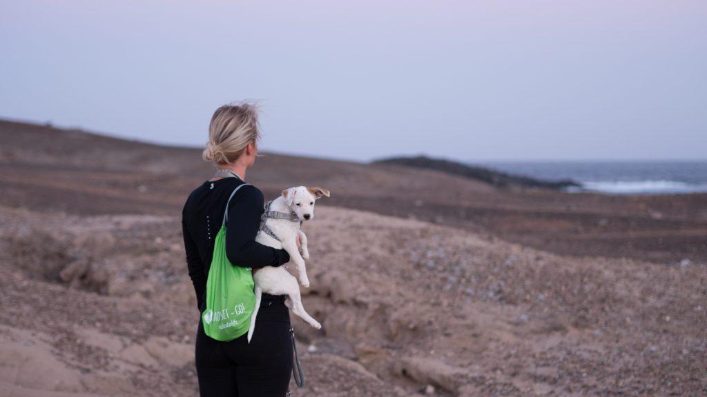 Med hund på Kanarieöarna - klimatförändringen orsakade hudproblem