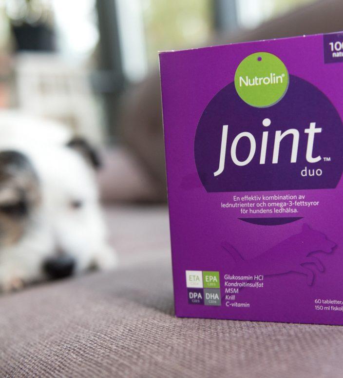 Nutrolin Joint Duo® – ledtillskott mot hundens artros