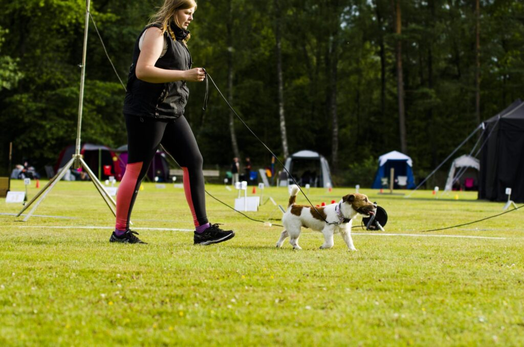 Tävlingsdispens för att tävla med en allergisk hund