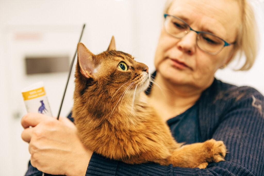 Kattens päls blir välmående med rätt fettsyror