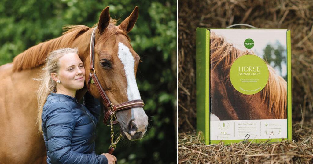 Lär dig mer om hästens hud- och pälsproblem