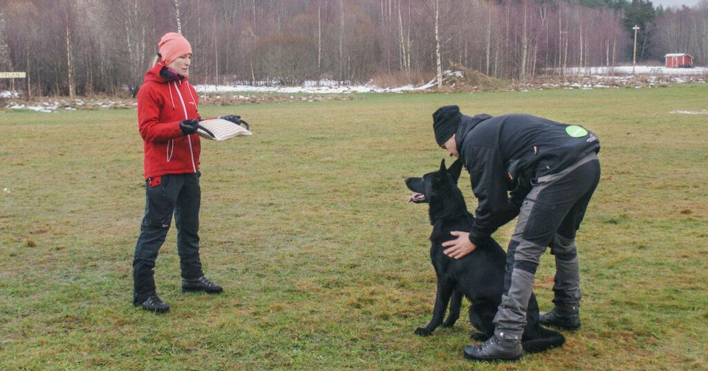 Från valp till väktarhund del 1