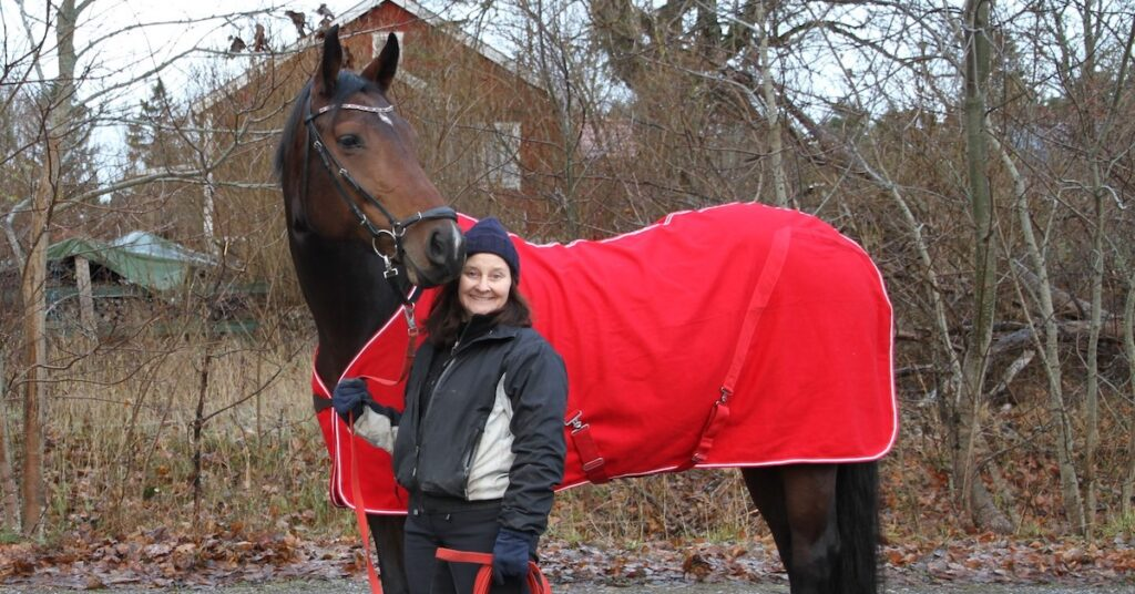 Jul och årsskifte för hästarna vid Skånsta Ryttare
