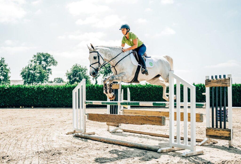 Sporthästen och snabbare återhämtning