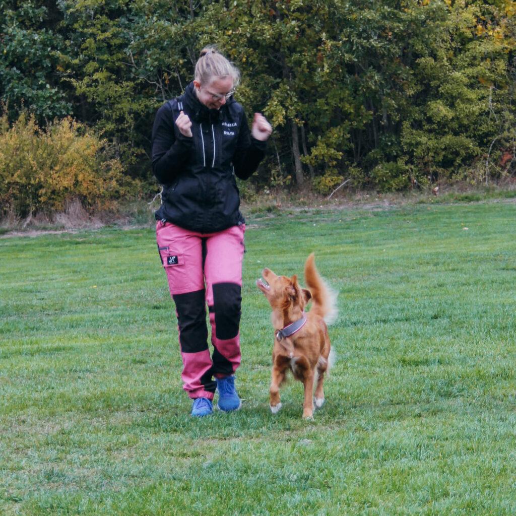 Hunden Allie får hjälp av Nutrolin® SKIN & COAT
