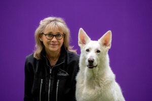 Hunden Zulis artros satte inte stopp för ett aktivt liv