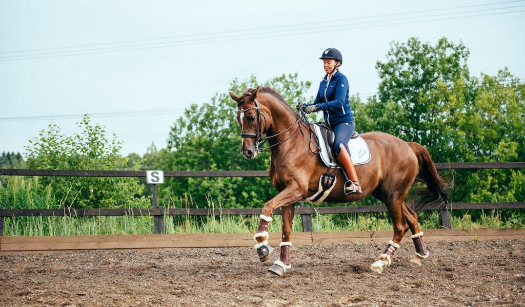 Dressyrryttaren Maarit Raiskio med hästen Zico