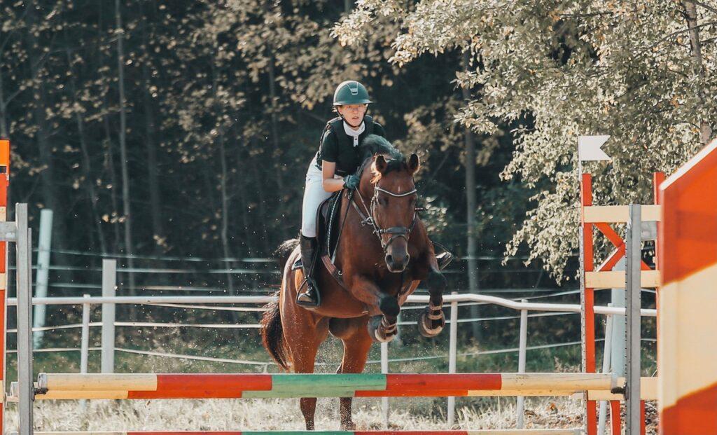 Hopphästen Zara hålls mjuk i kroppen med Nutrolin® HORSE Sport
