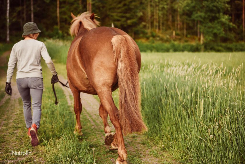 Nu mer E-vitamin i Nutrolin® HORSE Skin & Coat-näringsoljan