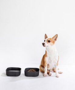 Miljösmarta Venandi Design Pet Bowl mat- och vattenskålar
