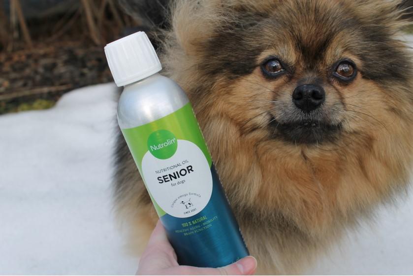 Hunden Bonzo älskar sin Nutrolin® SENIOR-näringsolja